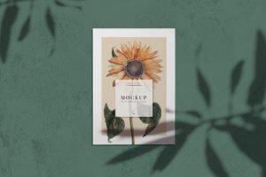 printingnews-B0062-01 paperbox好文分享-包裝設計-instagram所帶來的影響